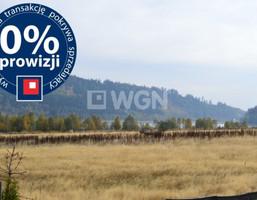 Działka na sprzedaż, Miszkowice, 12042 m²