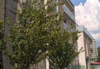 Mieszkanie na sprzedaż, Warszawa Wilanów, 42 m²