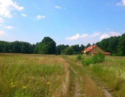 Działka na sprzedaż, Grzepnica, 3000 m²