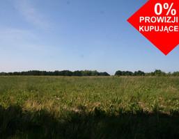 Działka na sprzedaż, Ramlewo, 28156 m²