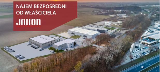 Magazyn, hala do wynajęcia 1250 m² Tarnowo Podgórne Swadzim ul. Wschodnia - zdjęcie 1
