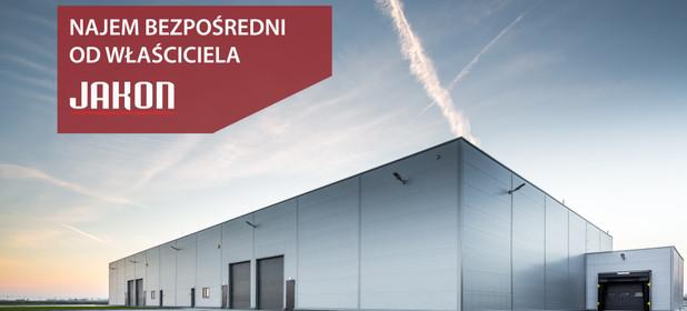 Magazyn, hala do wynajęcia 1250 m² Tarnowo Podgórne Swadzim ul. Wschodnia - zdjęcie 2