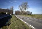 Działka na sprzedaż, Grochy-Pogorzele, 3005 m² | Morizon.pl | 5960 nr3