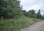 Działka na sprzedaż, Rykacze, 5106 m² | Morizon.pl | 0713 nr4