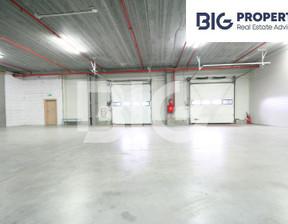 Magazyn do wynajęcia, Kowale Magnacka, 4163 m²
