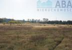 Działka na sprzedaż, Golina-Kolonia, 48400 m²   Morizon.pl   9181 nr19