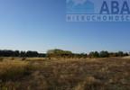 Działka na sprzedaż, Golina-Kolonia, 48400 m²   Morizon.pl   9181 nr3