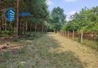 Działka na sprzedaż, Mieszkowo, 3000 m² | Morizon.pl | 7422 nr3