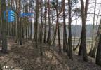 Działka na sprzedaż, Bogatki Azalii, 10600 m² | Morizon.pl | 3576 nr5