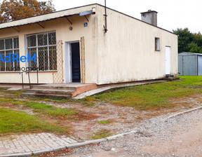 Lokal użytkowy na sprzedaż, Borawskie, 109 m²