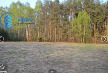 Działka na sprzedaż, Korzeniówka Słowicza, 6009 m²