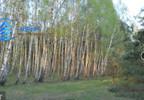 Działka na sprzedaż, Korzeniówka, 1300 m²   Morizon.pl   4405 nr3