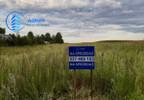 Działka na sprzedaż, Ryboły, 3000 m² | Morizon.pl | 9858 nr2