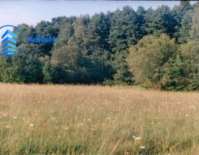 Działka na sprzedaż, Zalesiany, 7000 m²
