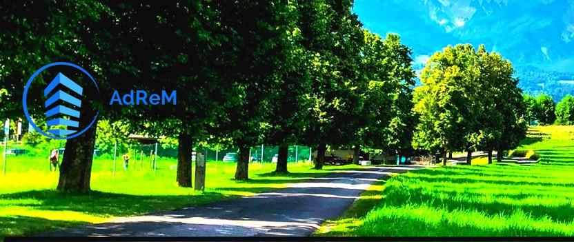 Działka na sprzedaż, Grzybowce, 3800 m²   Morizon.pl   0843