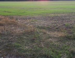 Działka na sprzedaż, Podłęcze, 3800 m²