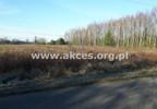 Działka na sprzedaż, Złotokłos, 24500 m²   Morizon.pl   0931 nr7