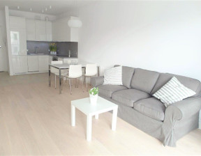 Mieszkanie do wynajęcia, Poznań Centrum, 53 m²