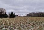 Działka na sprzedaż, Ciepłe, 5500 m² | Morizon.pl | 1580 nr9