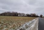 Działka na sprzedaż, Ciepłe, 5500 m² | Morizon.pl | 1580 nr3