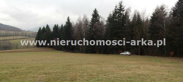 Działka na sprzedaż 18300 m² Limanowski Jodłownik - zdjęcie 2