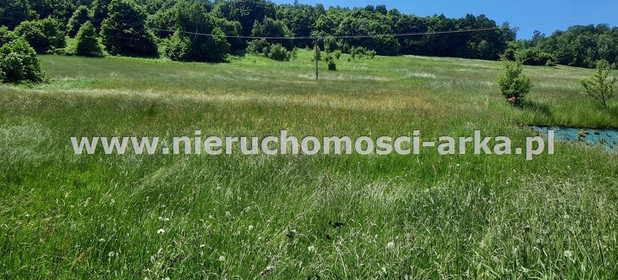 Działka na sprzedaż 3800 m² Limanowski Limanowa Młynne - zdjęcie 1
