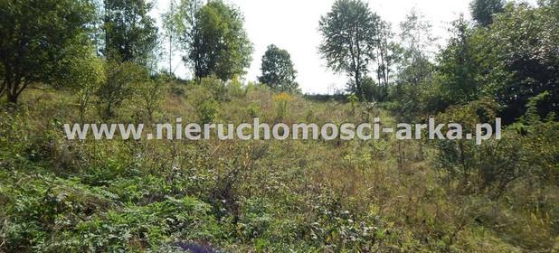 Działka na sprzedaż 1700 m² Limanowski Kamienica Szczawa - zdjęcie 3