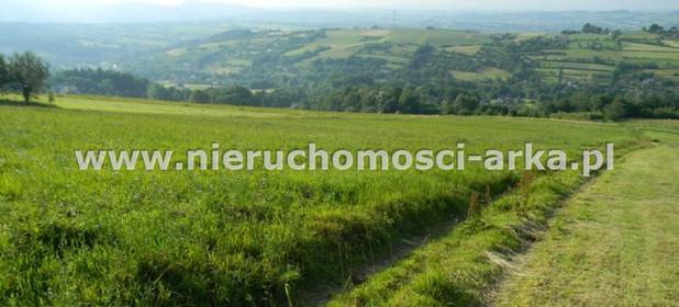 Działka na sprzedaż 17400 m² Limanowski Jodłownik Wilkowisko - zdjęcie 2