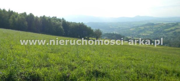 Działka na sprzedaż 17400 m² Limanowski Jodłownik Wilkowisko - zdjęcie 3