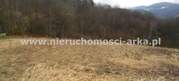Działka na sprzedaż 14100 m² Limanowski Limanowa Makowica - zdjęcie 2