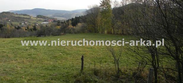 Działka na sprzedaż 3500 m² Limanowski Łukowica Przyszowa - zdjęcie 2