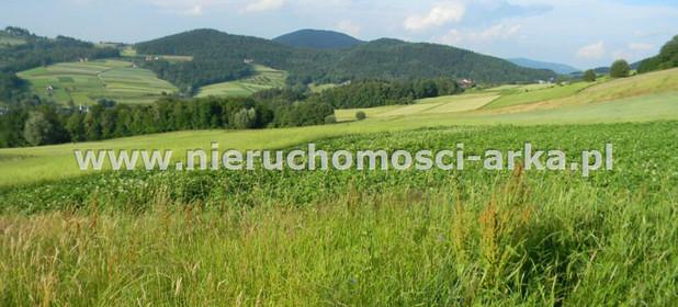 Działka na sprzedaż 17400 m² Limanowski Jodłownik Wilkowisko - zdjęcie 1
