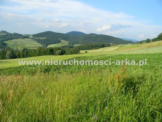 Działka na sprzedaż, Wilkowisko, 17400 m² | Morizon.pl | 1141