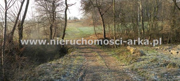Działka na sprzedaż 5800 m² Limanowski Limanowa Męcina - zdjęcie 1