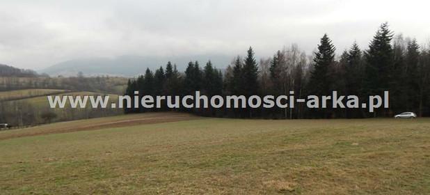 Działka na sprzedaż 18300 m² Limanowski Jodłownik - zdjęcie 3
