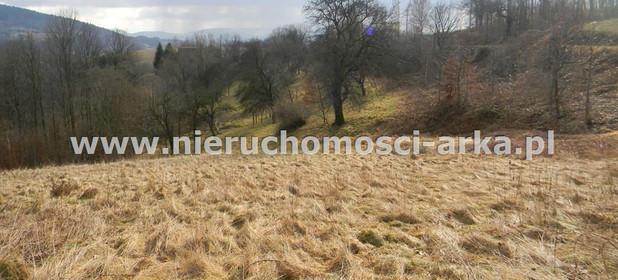 Działka na sprzedaż 14100 m² Limanowski Limanowa Makowica - zdjęcie 3