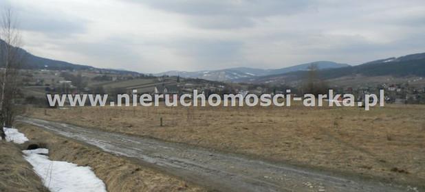 Działka na sprzedaż 5500 m² Limanowski Mszana Dolna Kasina Wielka - zdjęcie 3