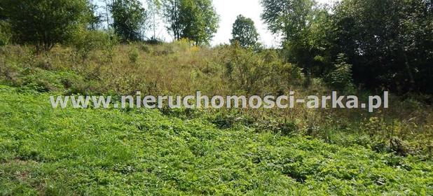 Działka na sprzedaż 1700 m² Limanowski Kamienica Szczawa - zdjęcie 2