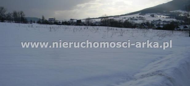 Działka na sprzedaż 5500 m² Limanowski Mszana Dolna Kasina Wielka - zdjęcie 2