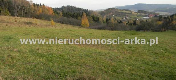 Działka na sprzedaż 3500 m² Limanowski Łukowica Przyszowa - zdjęcie 3