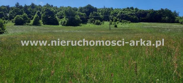 Działka na sprzedaż 3800 m² Limanowski Limanowa Młynne - zdjęcie 2