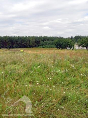 Działka na sprzedaż, Wudzyn, 11960 m² | Morizon.pl | 1936