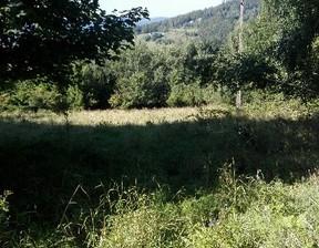 Działka na sprzedaż, Koszarawa, 4600 m²