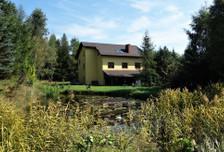 Dom na sprzedaż, Ludwikowice Kłodzkie, 450 m²