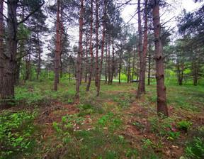 Działka na sprzedaż, Odrzykoń, 1050 m²