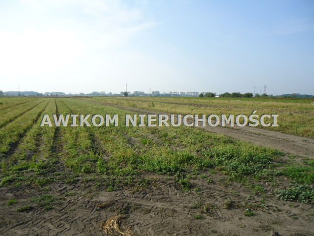 Działka na sprzedaż, Chlebnia, 90000 m²   Morizon.pl   0159