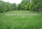 Morizon WP ogłoszenia   Działka na sprzedaż, Budy Zosine, 10500 m²   2628