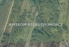 Działka na sprzedaż, Żabia Wola, 55000 m²