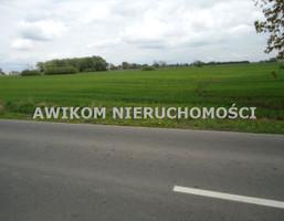 Morizon WP ogłoszenia   Działka na sprzedaż, Kampinos, 3330 m²   8347