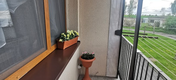 Mieszkanie na sprzedaż 61 m² Gnieźnieński (pow.) Niechanowo (gm.) Niechanowo - zdjęcie 3